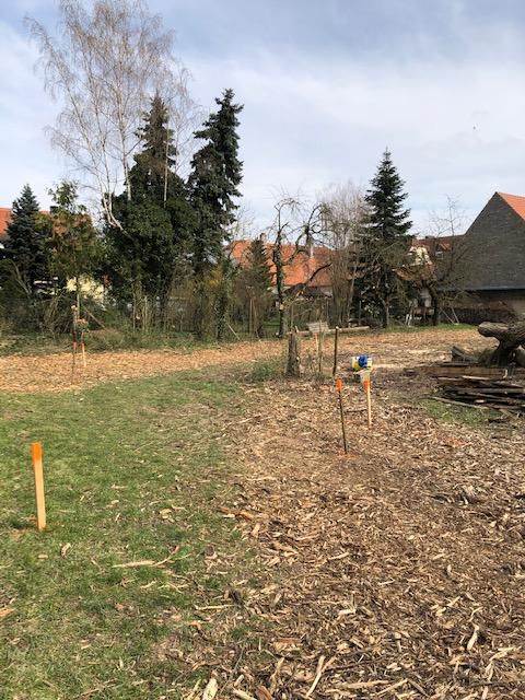 Grundstueck - Deutschherrenstr. 10 - Kleinrinderfeld (1)