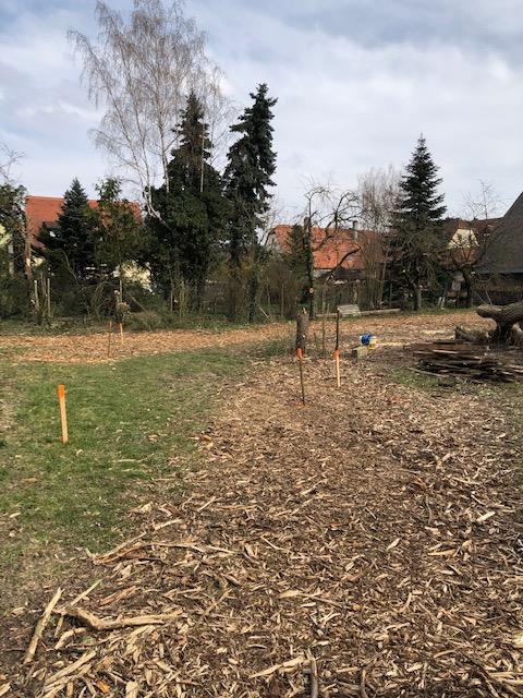 Grundstueck - Deutschherrenstr. 10 - Kleinrinderfeld (2)