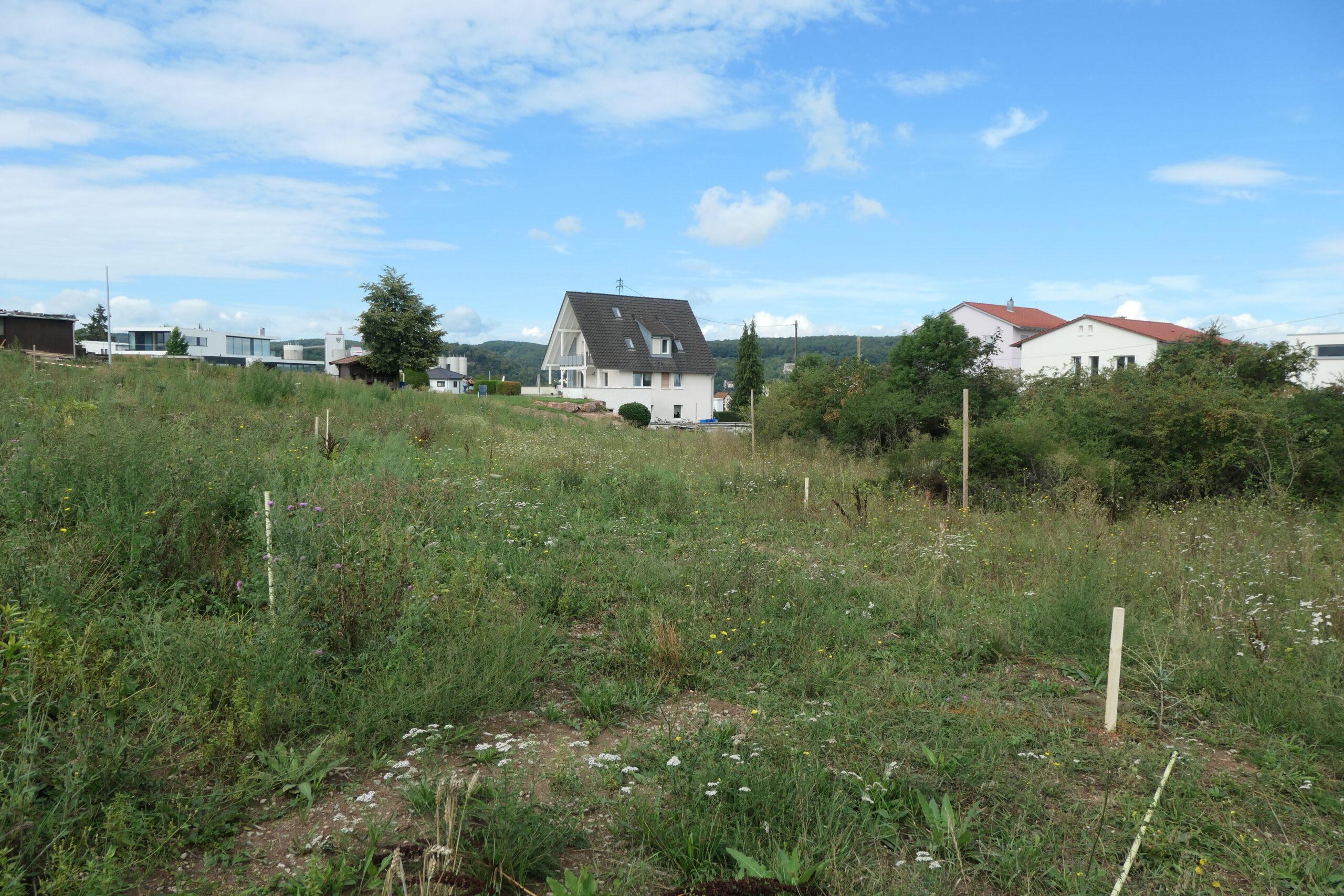 Grundstueck - Geisberg 15 - Karlstadt (1)